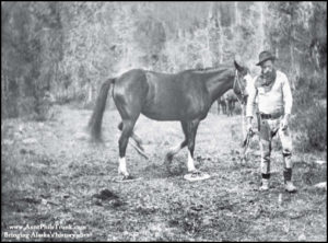 Jack Dalton leads his horse along his successful toll road trail during the late 1890s. Note: The horse is wearing snowshoes!